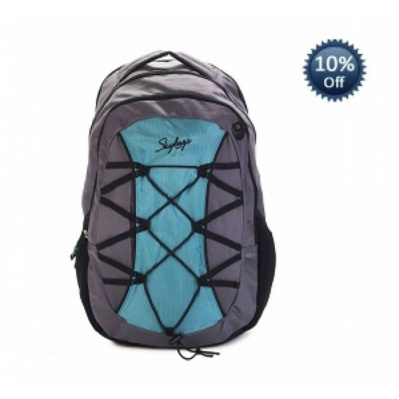 Skybags Note Laptop Backpack 02  (Blue/Grey)  1850
